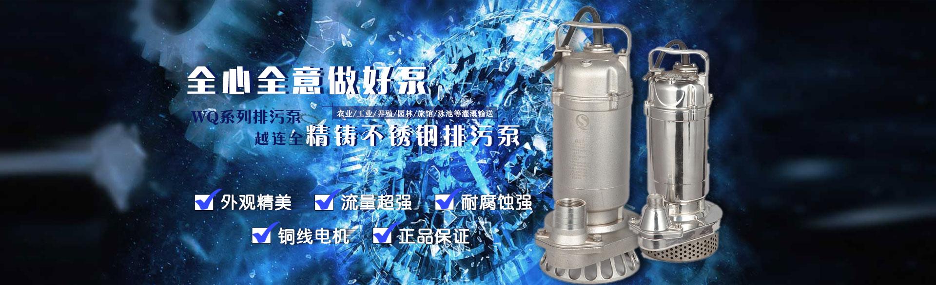 耐腐蚀不锈钢泵